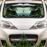 Automobili Green: una strada tutta verde verso il futuro!